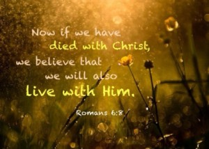 rom-6-8-now-if-we-have-died-with-Christ-we-believe-that-we-will-also-live-with-Him