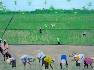 rice-field-haiti-1980-nicole-jean-louis