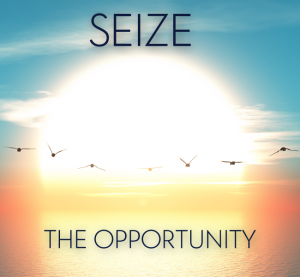 the_red_design_sieze_the_opportunity_ii